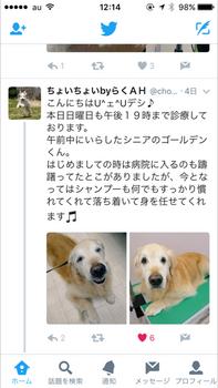 記事IMG_2118.PNG